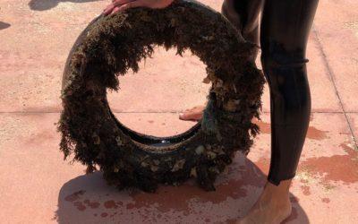 Fondali marini ripuliti da 8.500 pneumatici!